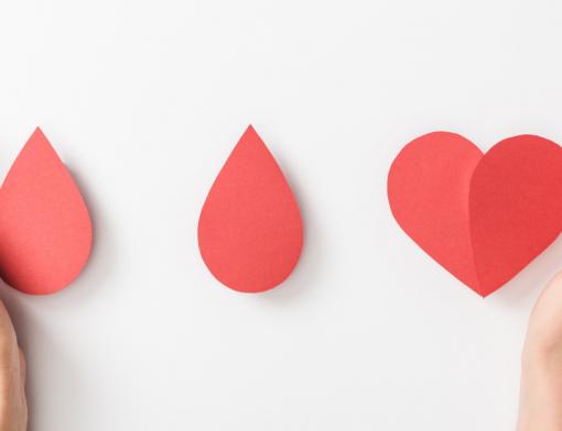 Descubra como funciona a doação de sangue
